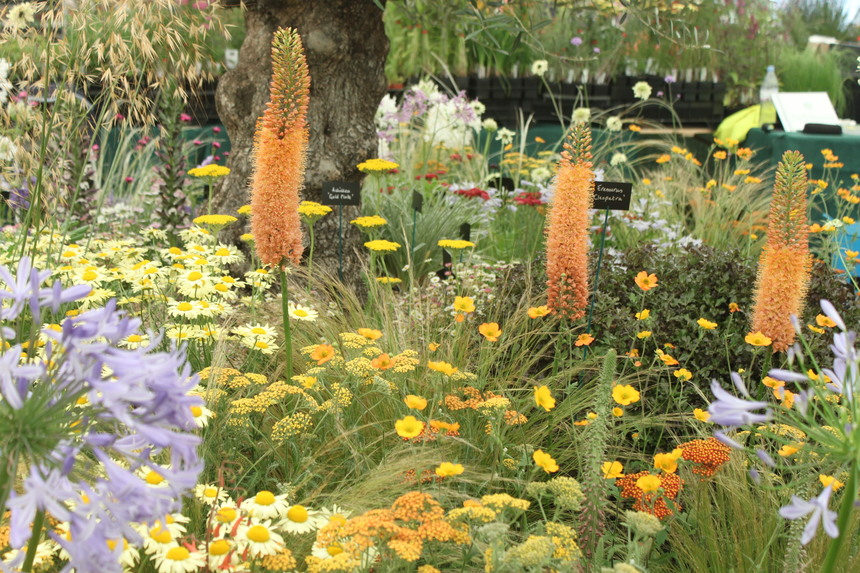 RHS Show dates announced for 2014
