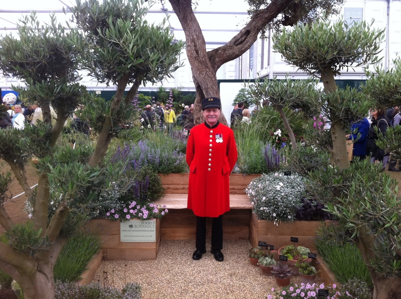 Todd's Botanics will exhibit at the Chelsea Flower Show 2013