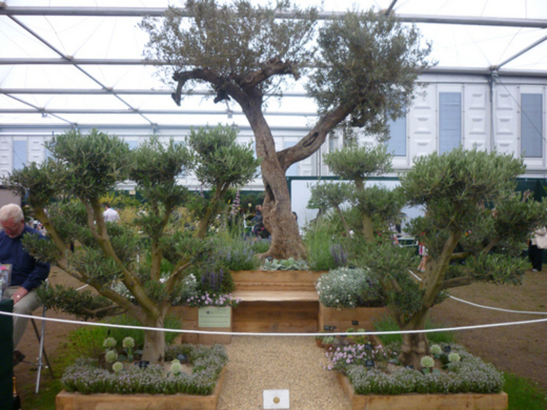 Silver-gilt at the Chelsea Flower Show